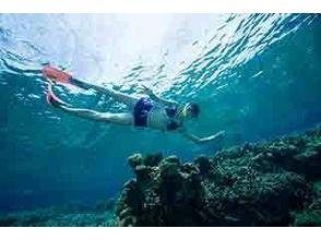 【沖縄 石垣島】綺麗な海で手軽に水中観察を楽しめるシュノーケリング1日プラン【ランチ付き】