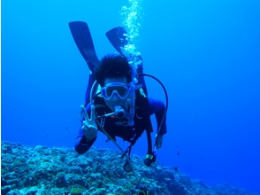 [Kagoshima-Amami Oshima] license! Open Water Diver course enjoy the diving in earnest