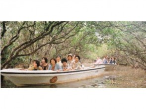 【鹿児島・奄美大島】マングローブ観光遊覧船(ガイド付き)の画像