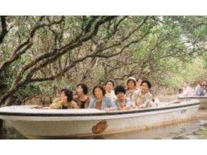 【鹿児島・奄美大島】マングローブガイド付き観光遊覧船~小さなお子様連れも楽しめます!!