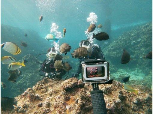藍洞船體驗潛水之旅【導覽記錄第一,出發概率第一,舒適設施第一】の紹介画像