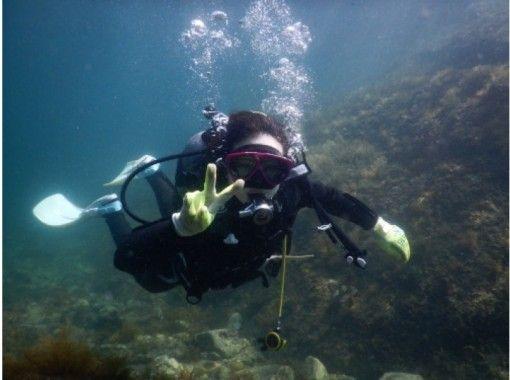 【福井・越前】ダイバー気分を味わう!体験ダイビング(半日コース)の紹介画像