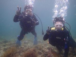 [福井越前]海到你的世界! !開放水域潛水員C卡取得(當然3天)