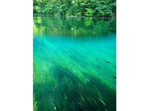 [Hokkaido Lake Shikotsu] National Park Snorkel Tour (Spring / Summer / Autumn) Participation from elementary school students OK / Tour photo giftの紹介画像