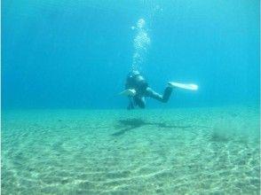 【北海道・支笏湖】ファンダイビング・11年水質日本一の支笏湖でダイビング・ツアー 写真プレゼント
