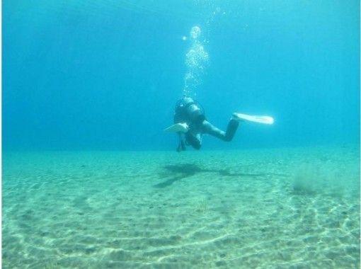【北海道・支笏湖】ファンダイビング・11年水質日本一の支笏湖でダイビング・ツアー 写真プレゼントの紹介画像