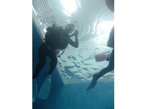 【北海道・札幌】体験ダイビング[プールでの開催]の画像