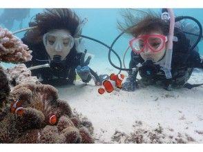 【石垣島発着】 安心の少人数制!憧れの無人島&美ら海体験ダイビング!(1日コース)