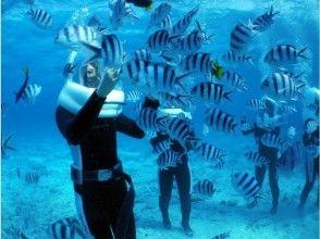 [沖繩]簡單的水下散步!恩納的步行海洋圖像去用專用船