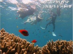 【沖縄・恩納村】完全貸切り:クマノミシュノーケリングツアー(ボートエントリー)