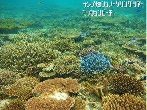 【沖縄・恩納村】完全貸切り:クマノミ&サンゴ畑シュノーケリングツアー