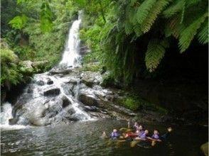 【沖縄・西表島】目指せ、幻の滝!ナーラの滝トレッキング・カヤックツアー!!★1日プラン★の画像