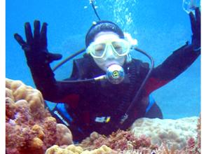 【鹿児島・奄美大島】体験ダイビング&マングローブカヌーの画像