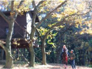【群馬・みなかみ】大自然を体感できる!引き馬プラン【森林浴コース/約10分】の画像