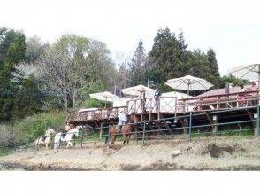 【群馬・みなかみ】馬場レッスンプラン!【牧場内コース/約45分】の画像