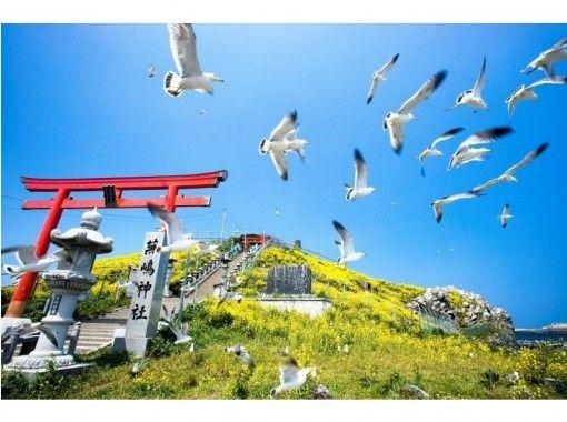 【青森・八戸】みちのく潮風トレイルゆっくりトレッキングツアー三陸復興国立公園「蕪島~種差海岸」
