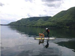 【長野・木崎湖】ファミリーSUP、犬連れでのワンコSUPにも最適★プライベートコース★の画像