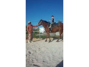 【沖縄・国頭】引き馬体験<お子様大歓迎!(3歳~)>の画像