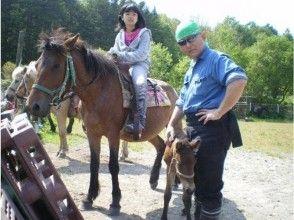 【北海道・北広島】乗馬体験(引き馬:馬場内2周)の画像