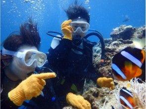 [沖繩/前田岬舉行/約2.5小時]幸福在船航行!海葵魚跳水