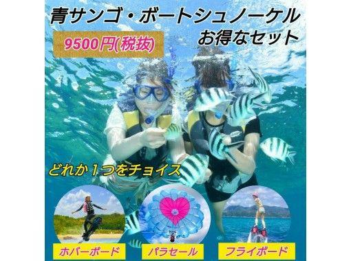 【沖縄・名護】(フライボードorホバーボードorパラセール)+ボートシュノーケル 選べて格安セット