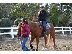 【千葉・市原】お子様に人気 曳き馬(ひきうま)体験プランの画像
