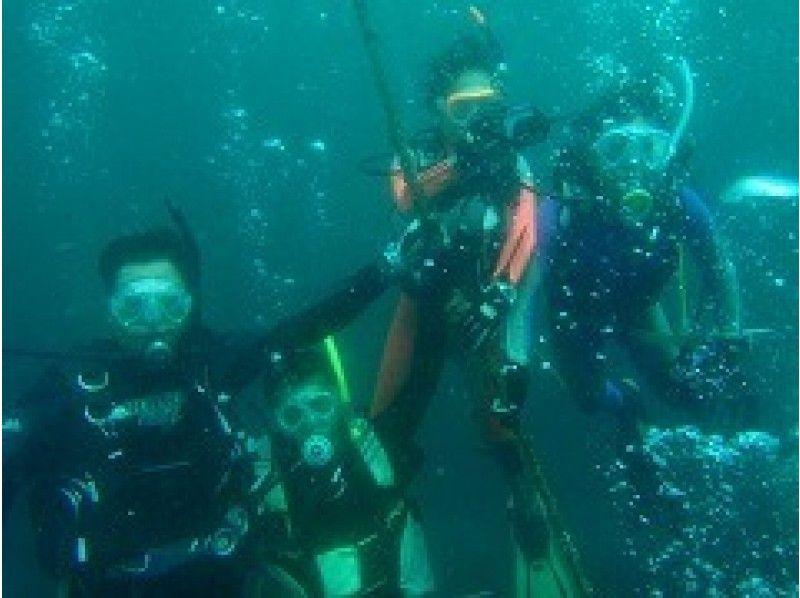 【神奈川・江の島】体験ダイビングの紹介画像