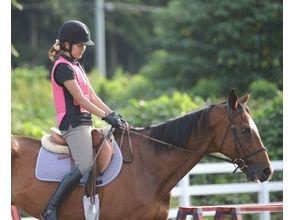 【茨城・守谷】乗馬をより楽しみたい方に!体験乗馬(5回コース)の画像