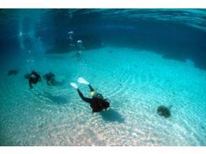 [Okinawa Ishigaki] experience diving (1 day course)