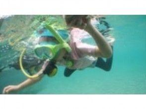【長崎・佐世保】体験ダイビング(初心者歓迎☆ライセンス不要)の画像