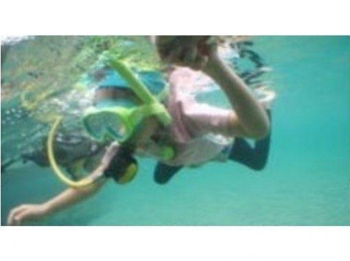 Aqua Face Diving School (Diving School Aqua Faith)