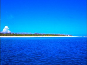 【沖縄・恩納村発】北部、南部、離島 リクエストボートファンダイビング 2Dive