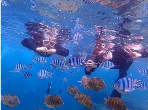Dive Center Isles Okinawa(ダイブセンターアイルズオキナワ)