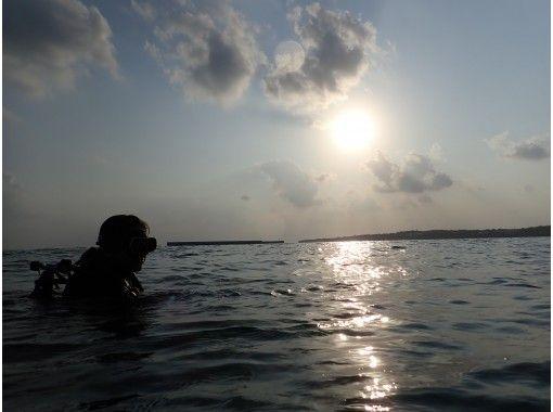 【沖縄・本部町】名所ゴリラチョップを潜る!ビーチファンダイビング