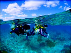 【沖縄・恩納村】青の洞窟+熱帯魚パラダイス ボート体験ダイビングWコースセット