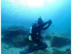[Nagasaki Sasebo / West Sea / Oseto off the coast] fan diving (license owner interest)
