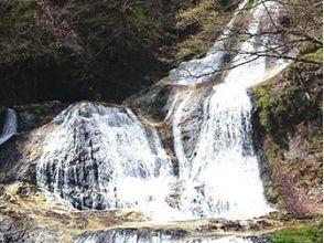 【栃木・日光】霧降の滝シャワーウォーキング(軽食付き:1日コース)