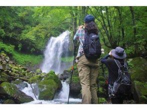 【栃木・日光】初心者歓迎!マイナスイオン浴びてリフレッシュ「霧降隠れ三滝ハイキング」ツアー
