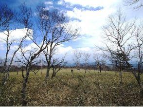 【栃木・日光】初心者歓迎!お得なランチ付きのゆったり丸山トレッキング!の画像