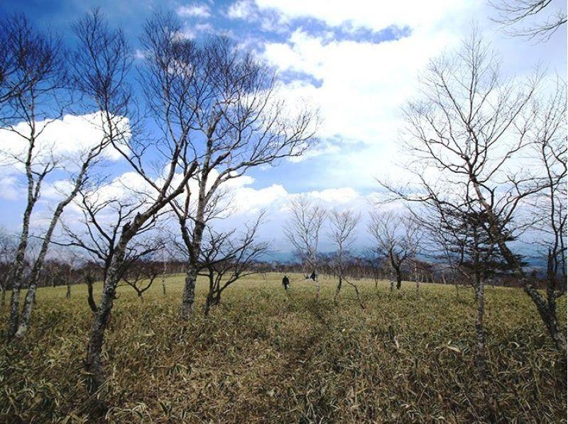 【栃木・日光】初心者歓迎!お得なランチ付きのゆったり丸山トレッキング!の紹介画像