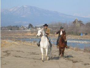 【群馬・利根川】利根川パカパカ散歩(外乗)【乗馬】の画像