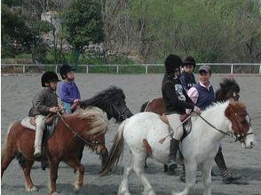 【群馬・利根川】ポニークラブビジター【乗馬】の画像
