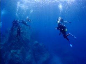 [Kagoshima Bonotsu] of clear blue sea! Akime Bay boat diving