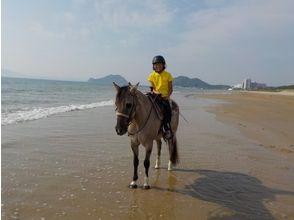 【福岡・宗像】乗馬を満喫!ビーチ乗馬体験(馬場レッスン+1時間外乗)