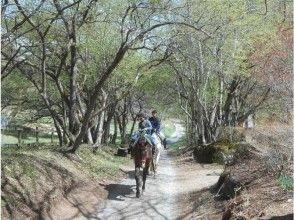 【山梨・八ヶ岳】充実の乗馬日帰りプラン(食事付き)馬場レッスン+森林浴トレッキングの画像