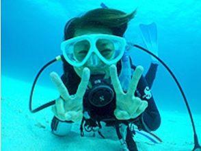 【沖縄・小浜島】泳げない方も!お子様も!ダイビングを身近に気軽に体験!半日体験ダイビングコースの画像
