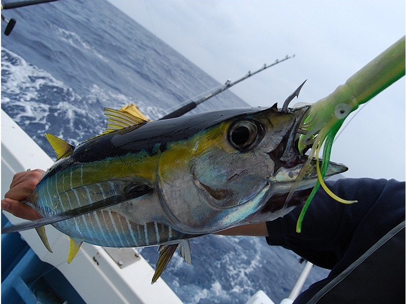 [Okinawa Kohama] 3 hours to enjoy the easy fishing! Light tackle the course of the introduction image
