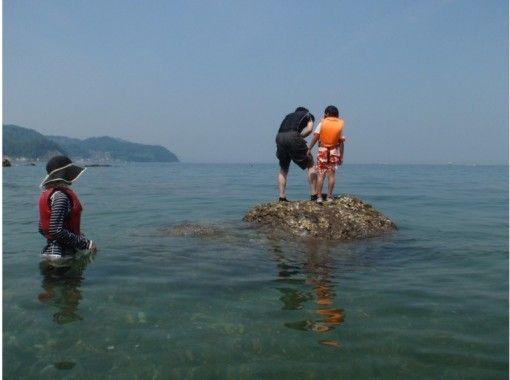 【和歌山・和歌浦湾】シーカヤック体験(半日コース)の紹介画像
