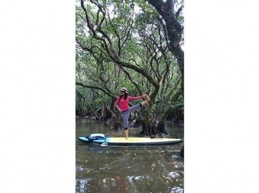 ★可包场★【【【鹿儿岛·奄美大岛】红树林悠闲地游览SUPの紹介画像