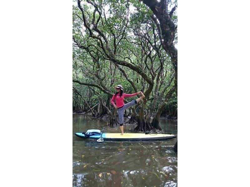 ★貸切案内★【鹿児島・奄美大島】SUPでマングローブのんびりツアーの紹介画像